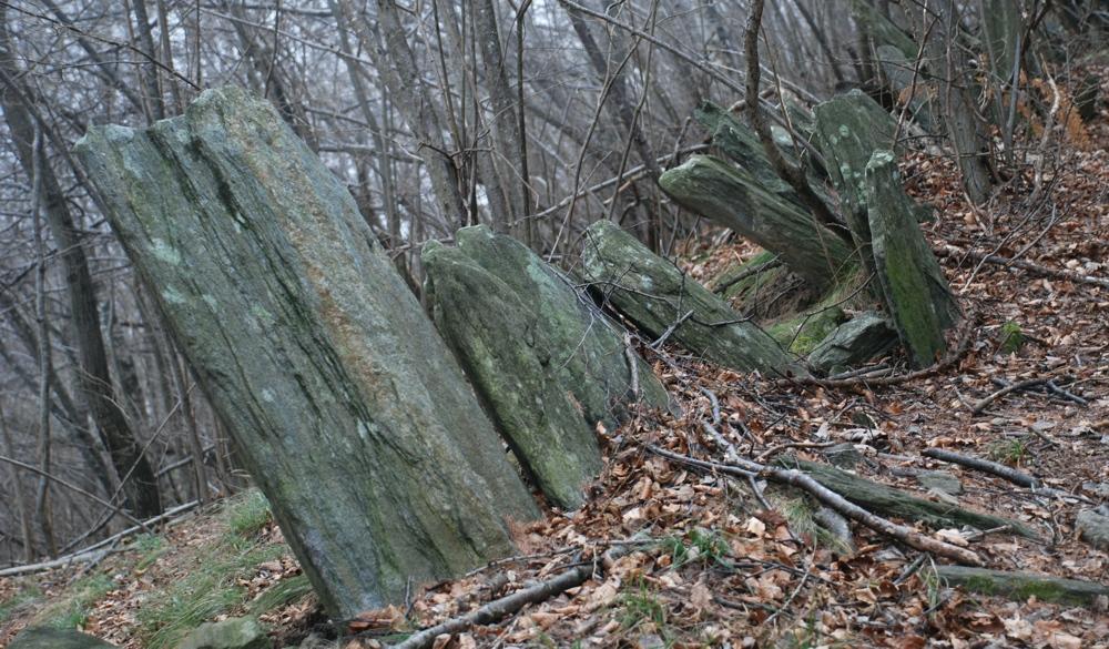 ... pietre infisse al suolo a mo' di ventaglio...