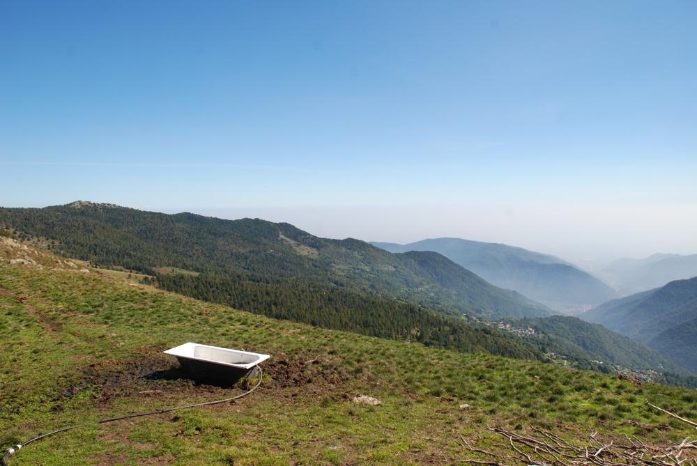 Himalaya la crema che candeggia risposte di 50 millilitri