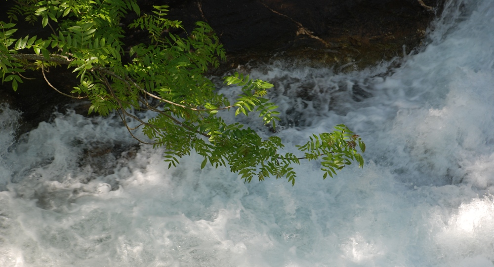 L'acqua del Il rio di Massello