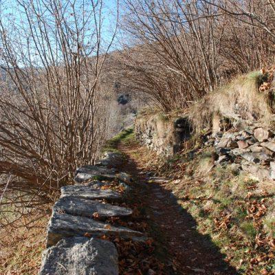 Il sentiero dai Ribetti