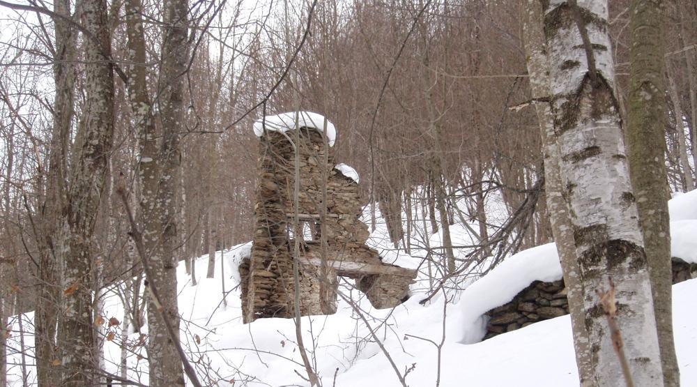 Il rudere nel bosco