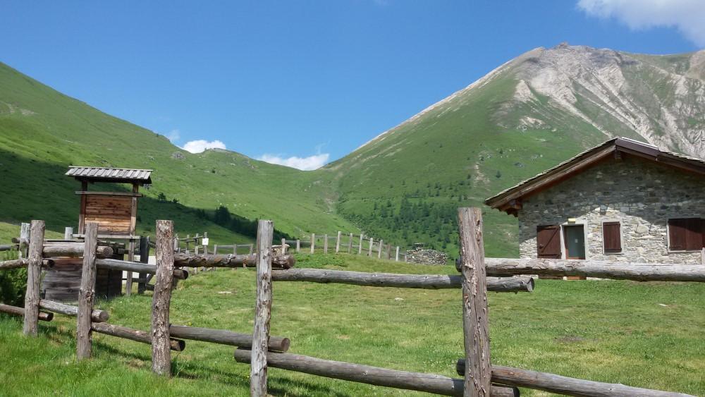Il Colle delle Finestre da Pian dell'Alpe